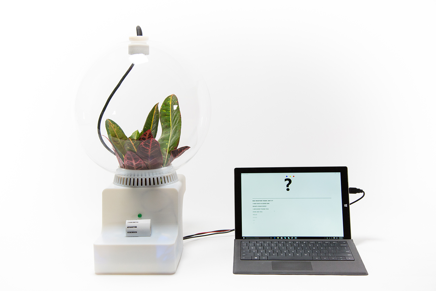 Plant Fever - Towards a psycho-centred design