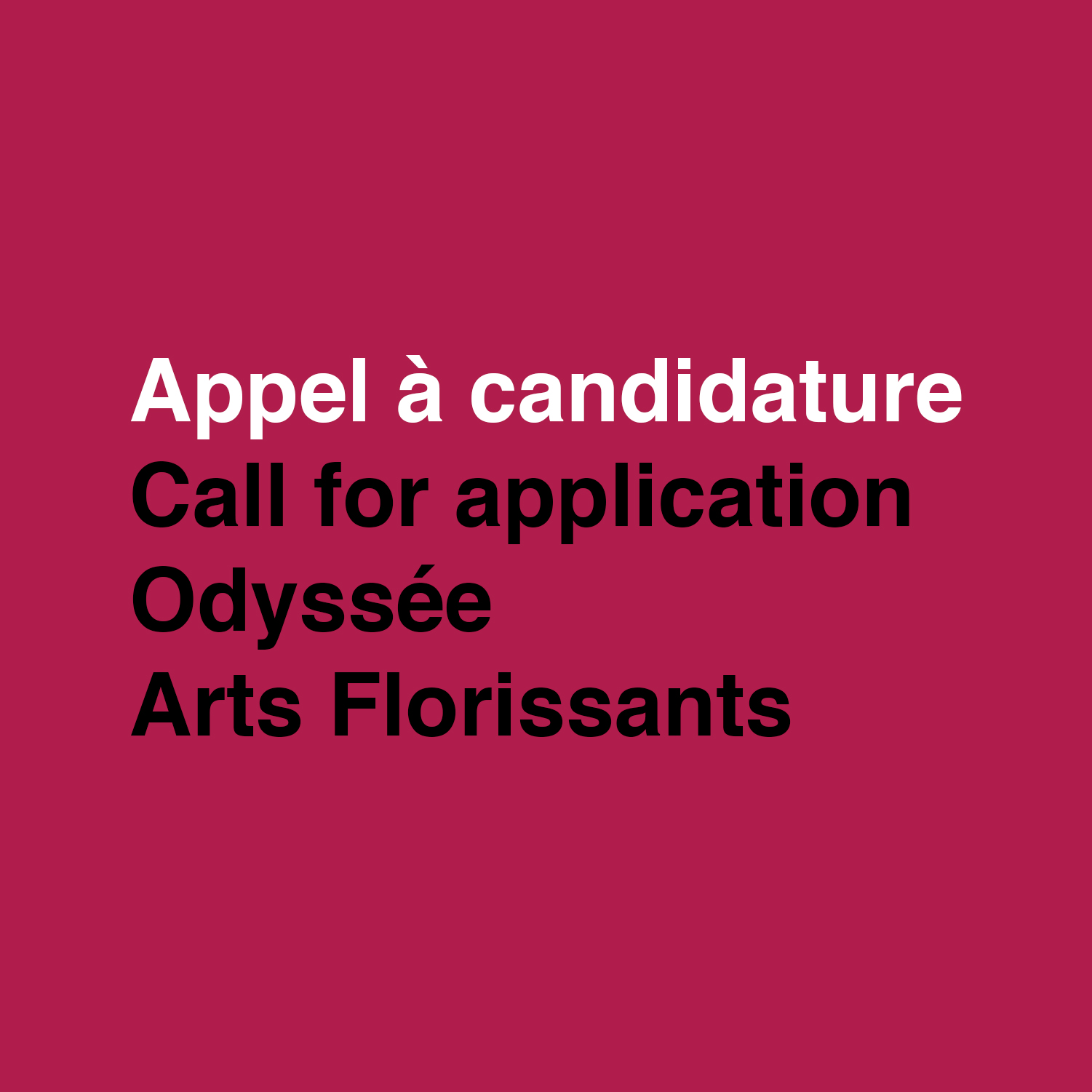 Call for Application - Foundation Arts Florissant